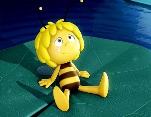 immagini ape maia