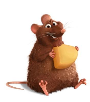 immagine ratatouille