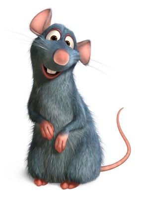immagini di ratatouille
