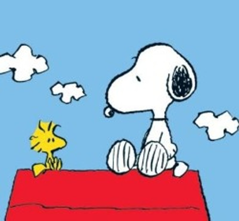 immagine snoopy